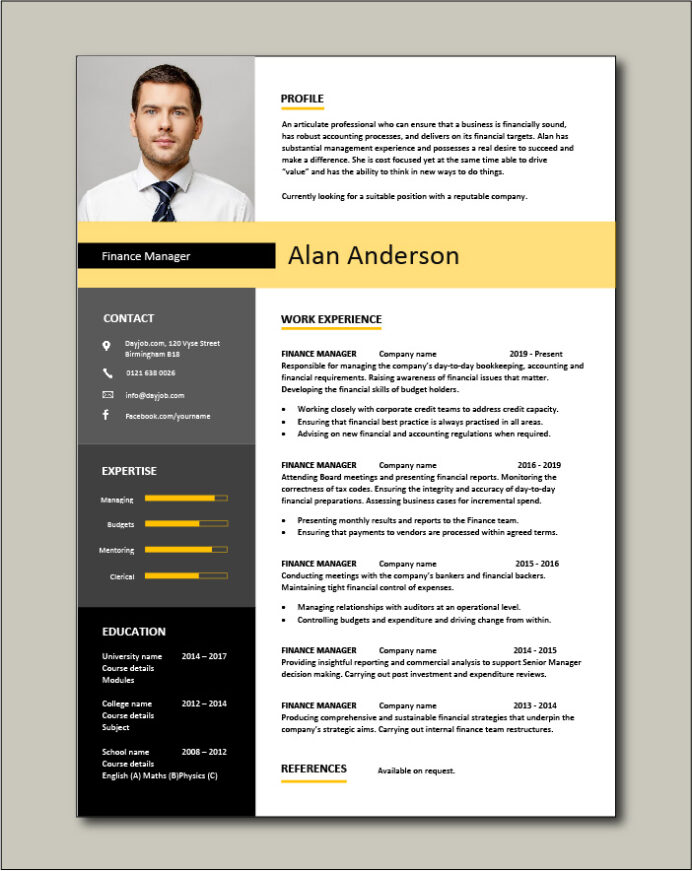 finance manager resume cv example sample templates auditing job description cash Resume Finance Professional Resume