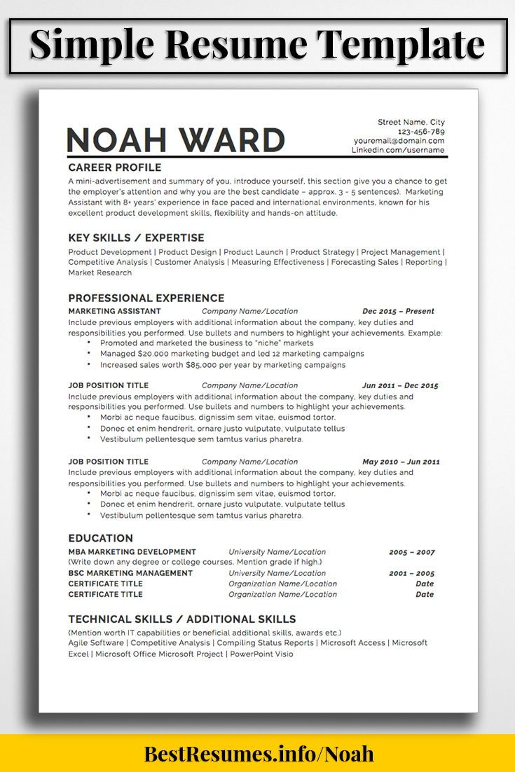 one resume template noah bestresumes info job simple example professional profile about Resume Resume Example Professional Profile About Yourself