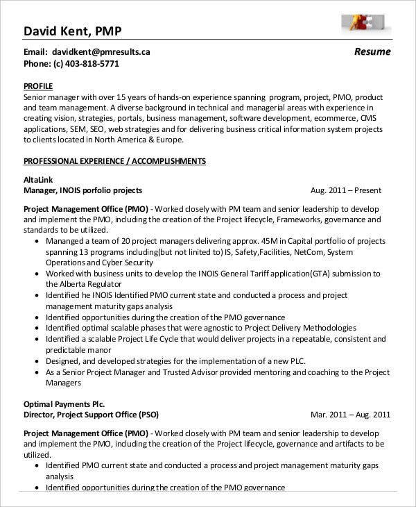 project management resume example free word pdf documents premium templates sample for Resume Sample Resume For Pmo Role