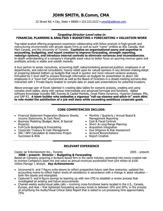 resume template for director of finance you can it and make your own executive project Resume Finance Manager Resume Summary